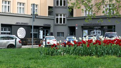 Zelena Praha Mapy Cz