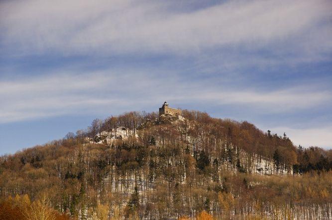 zřícenina hradu Kamenice (Autor: Petr Maryška, pořízeno 21. 2. 2010)